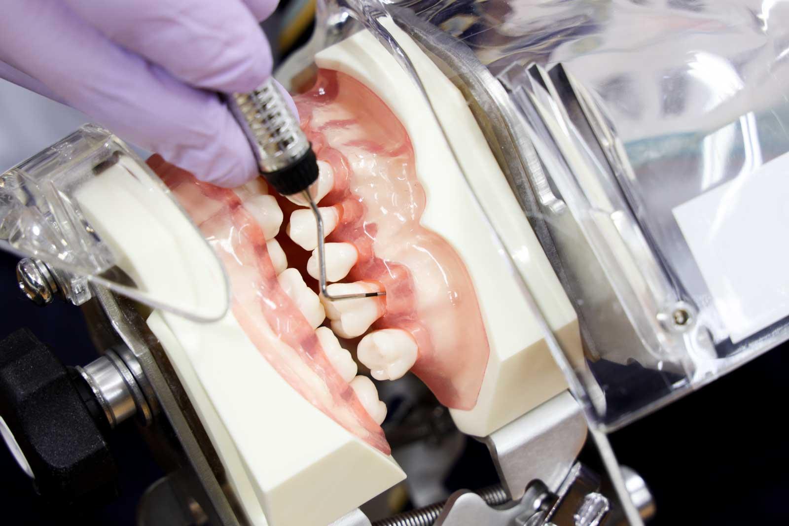 歯科衛生士養成コース_実習風景1アップ